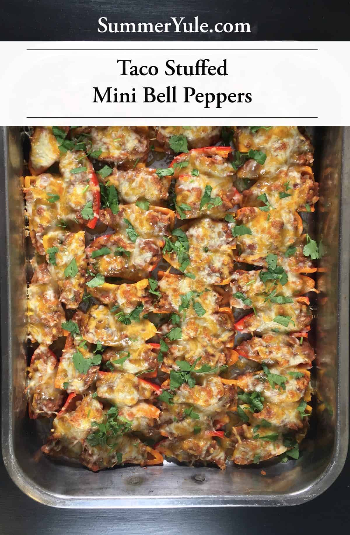 Large silver tray of Taco-Stuffed Mini Bell Peppers after baking