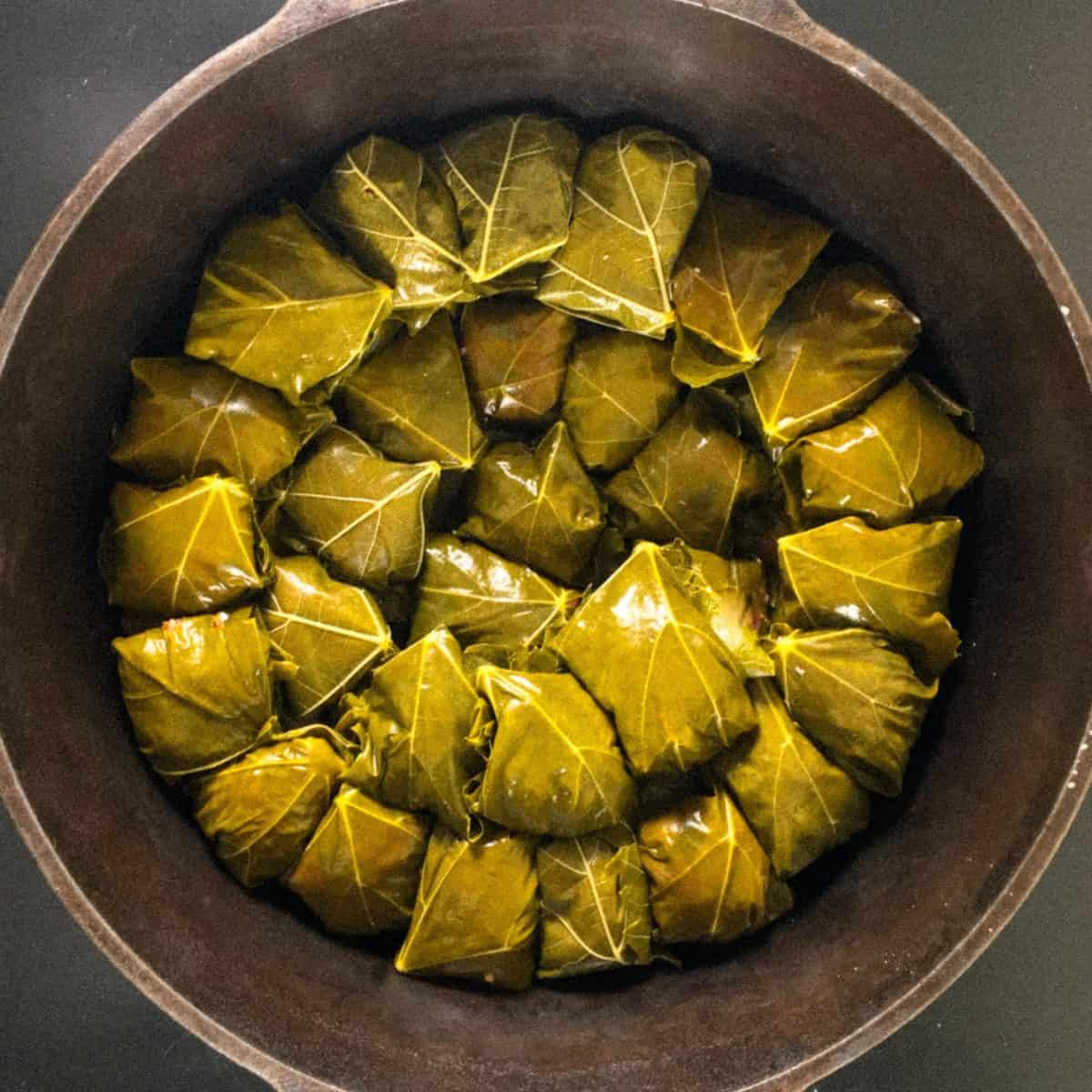 Grape leaves with rice and meat square image