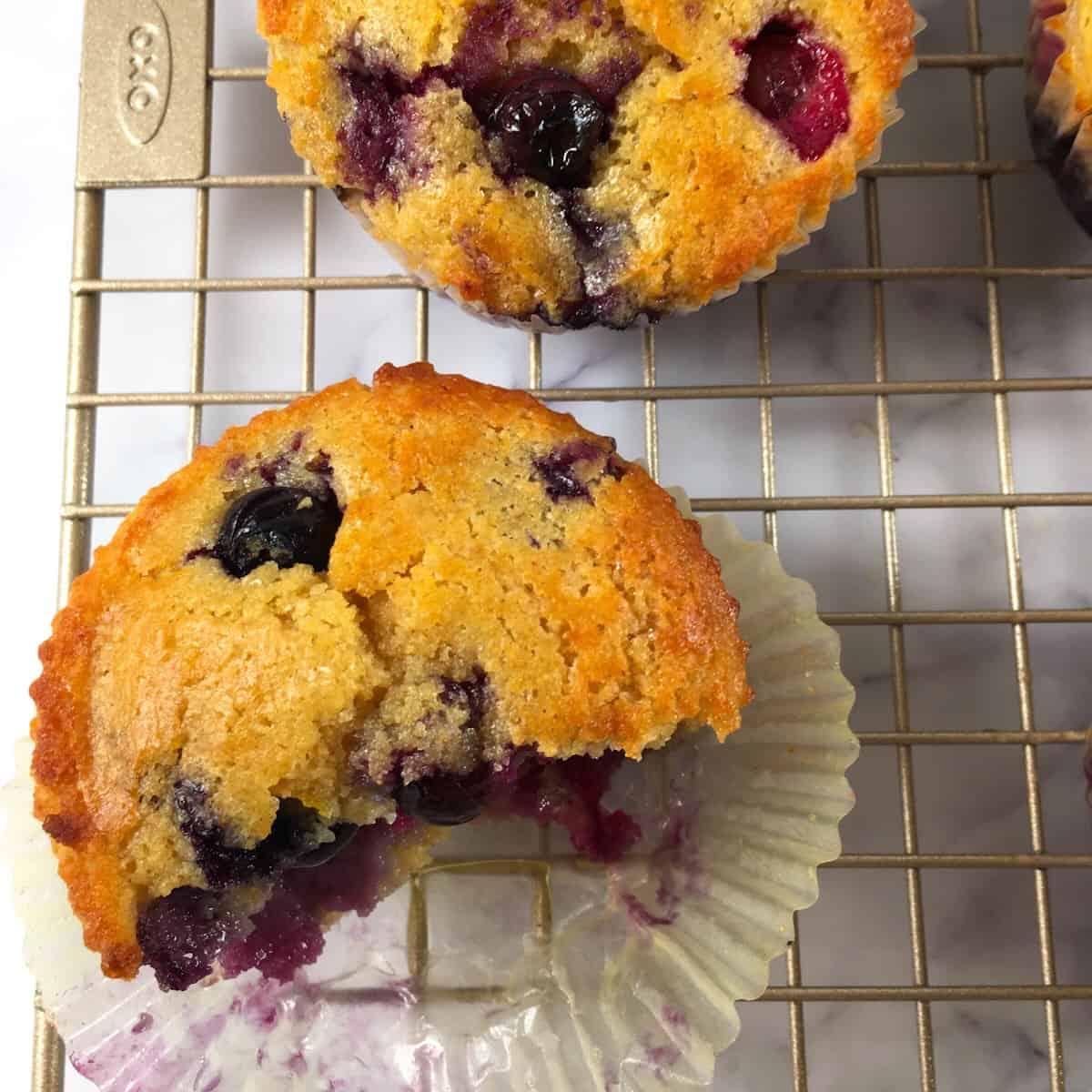 kodiak cakes blueberry muffins