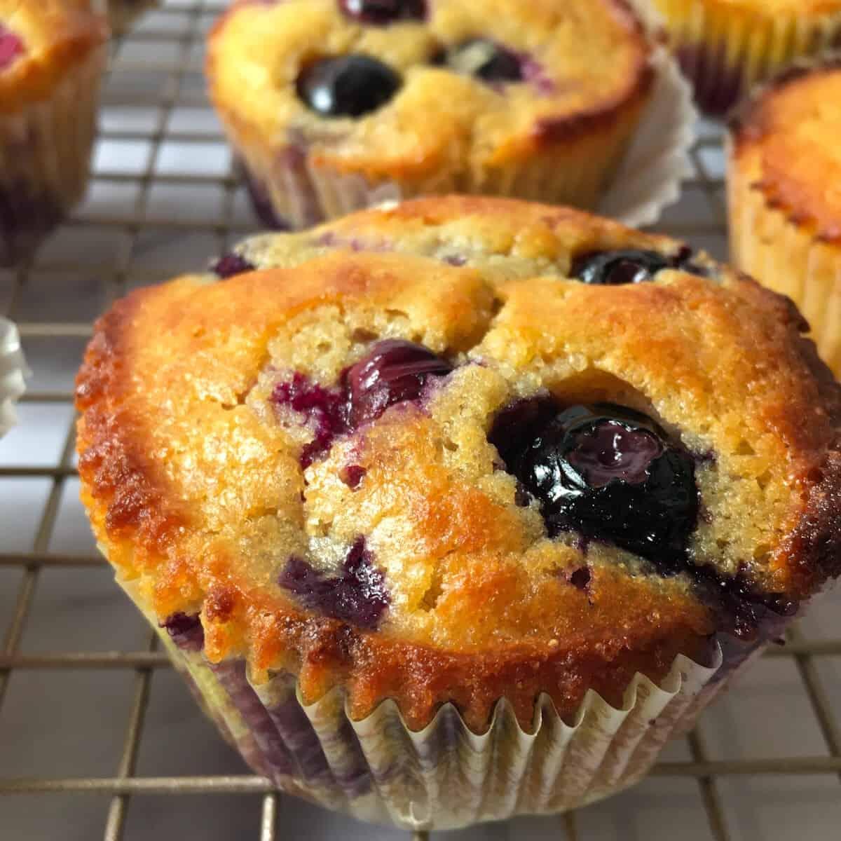 kodiak cakes muffin recipe