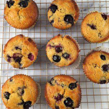 kodiak cakes muffins