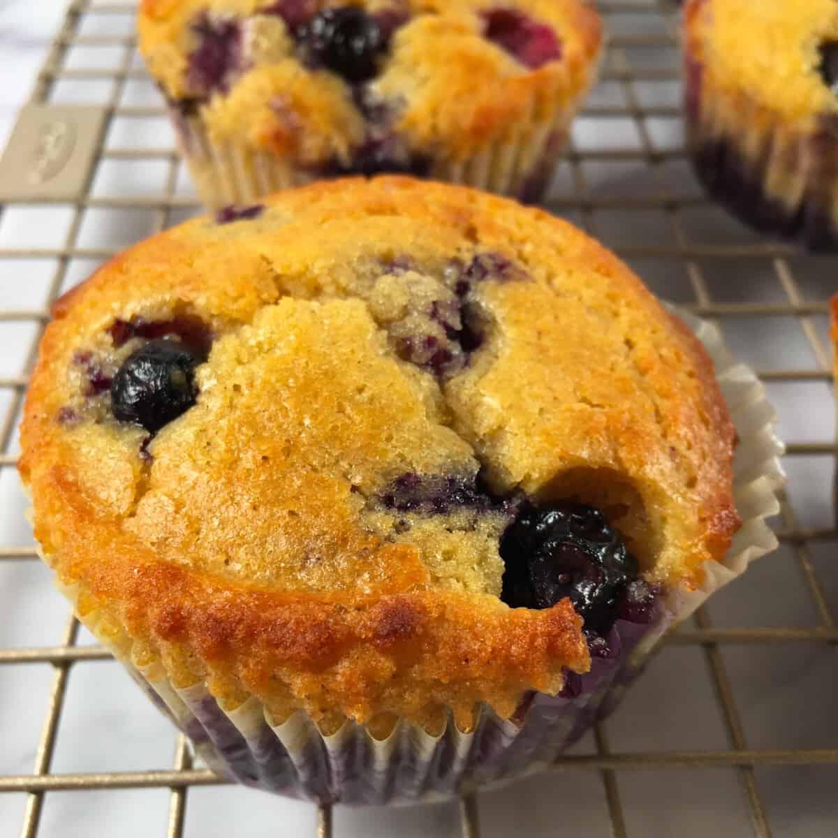 protein muffin blueberries