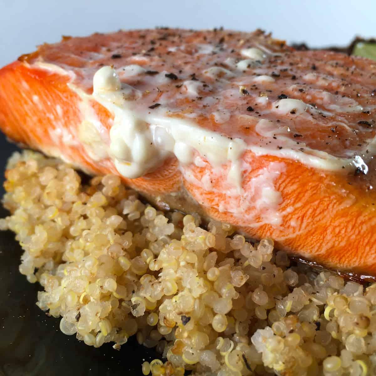 frozen salmon protein