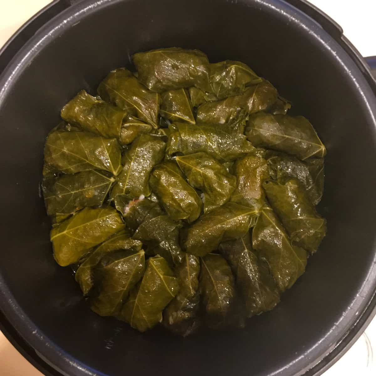 grape leaves in instant pot